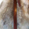 Fourreau d' épée-corne